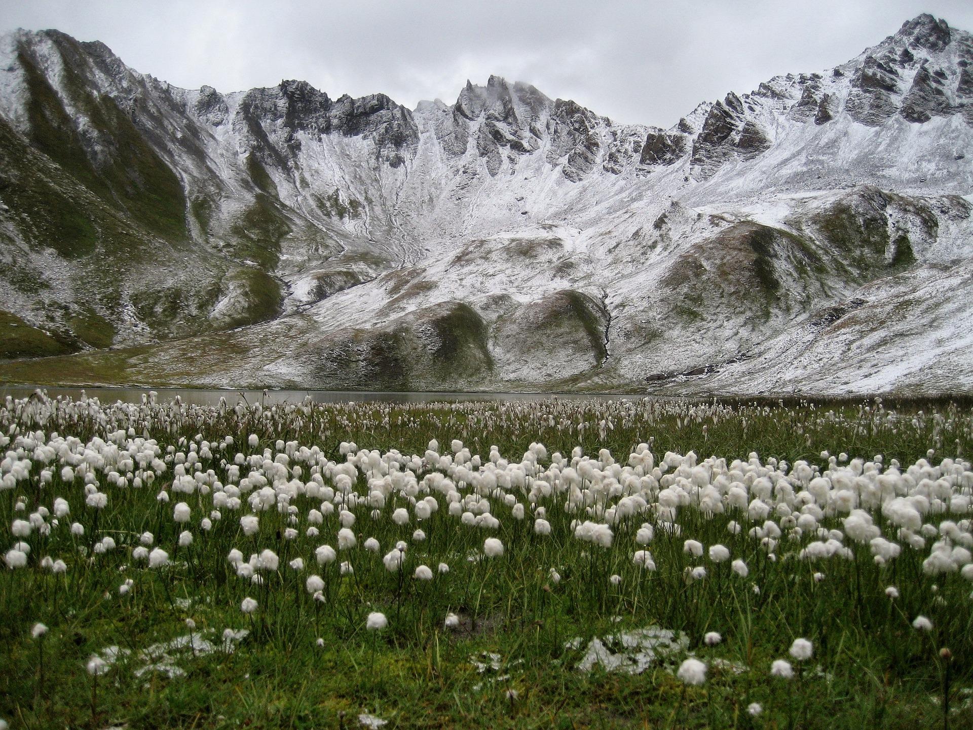 Principaux avantages et inconvénients à habiter à la montagne